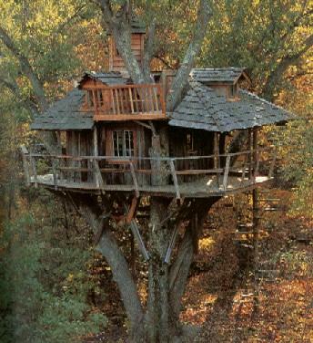http://www.beatcanvas.com/treehouse_01.jpg